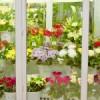 Как выбрать холодильную камеру для магазина цветов?