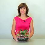 Флорариум из комнатных растений. Мастер-класс практической флористики.