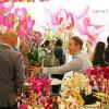 Flowers Expo 2014
