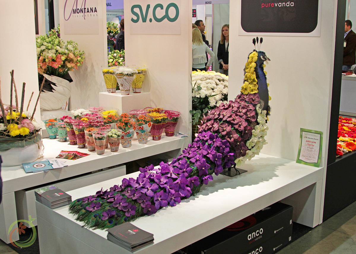 Производители Орхидей показали нам красивые инсталяции