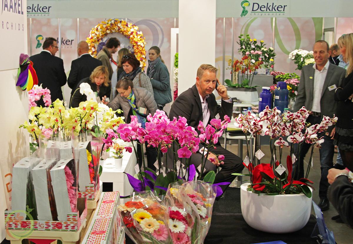 Производители показали свои лучшие цветы и флористические товары