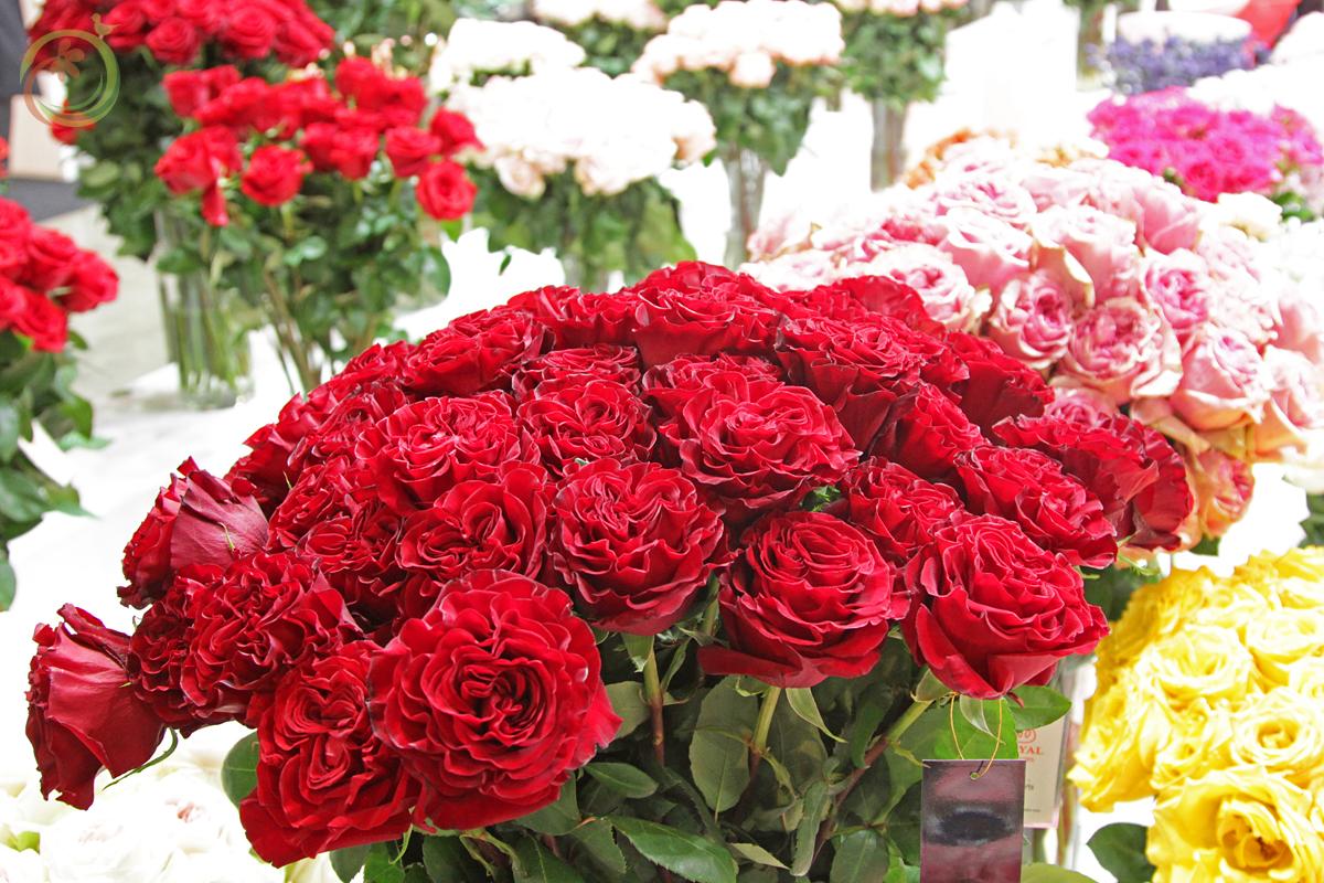 Красные розы самые популярные в России